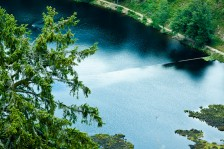 Moorsee | Bog Lake
