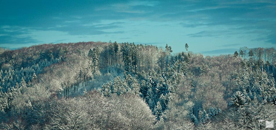 Weisser Schwarzwald | White Black Forest