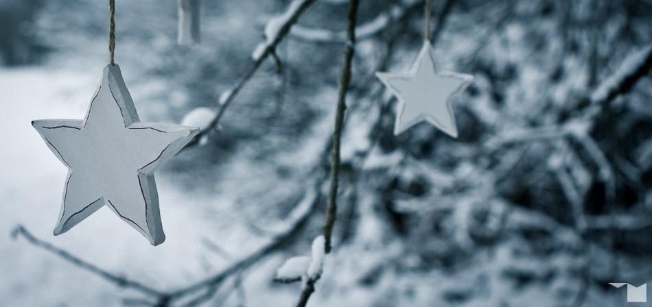 Schneesterne | Snowstars