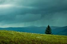 Regen! | Rain!